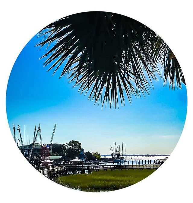 no complaints here | #winterweather CHARLESTON style
