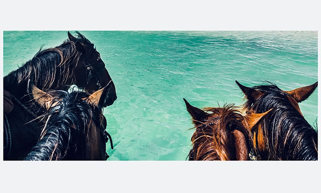 horseback riding in the ocean is an experience everyone should try at least once in their life! | #adventuretravel #savioroftheworld #tryingsomethingdifferent